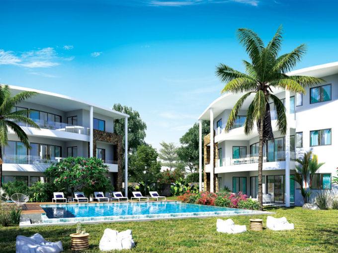 Palm Grove 2